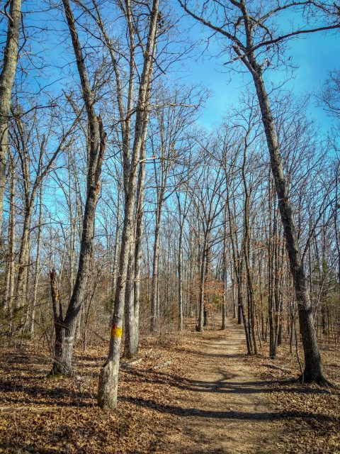 Short Hike at Busiek